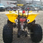 ATV Renegade 125 cmc